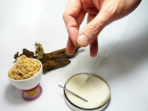 池田鍼灸治療院-漢方